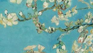 bloesem van Gogh
